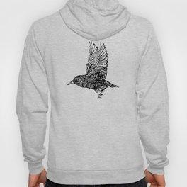 Flock of Starlings / Murmuration Hoody