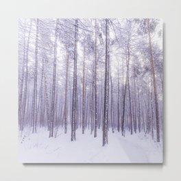 Snow in Trees Metal Print