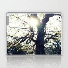 Golden Moss Laptop & iPad Skin