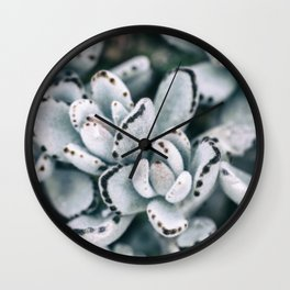 Blue soft and delicate cactus Wall Clock