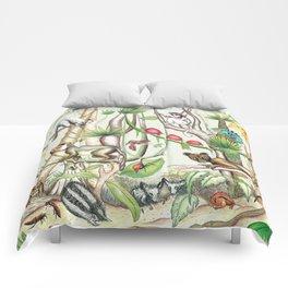 Endemic Species of Madagascar Comforters
