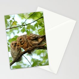 Barred owl mom and baby Stationery Cards