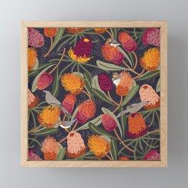 Australian Banksia Framed Mini Art Print