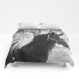 Stunning Gypsy Vanner Comforters