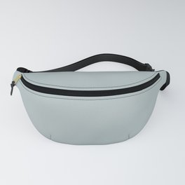 BP Watery Gray HDC-CT-26 Trending Color 2019 - Solid Color Fanny Pack