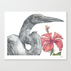 Egret with Hibiscus Canvas Print