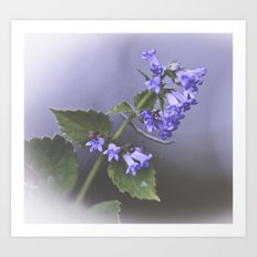 La Couleur de Violette Art Print