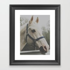 Franky. Framed Art Print