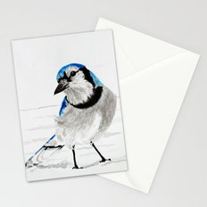 Blue Jay (Cyanocitta cristata) Stationery Cards