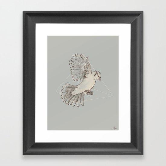 Dynamics of Flight Framed Art Print