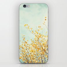 Yellow Tree Leaves Mint Sky Photography, Nature Turquoise Teal Gold Aqua iPhone & iPod Skin