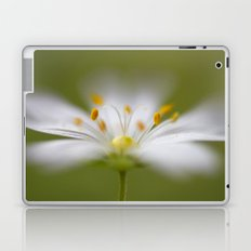 Softly Stitchwort Laptop & iPad Skin