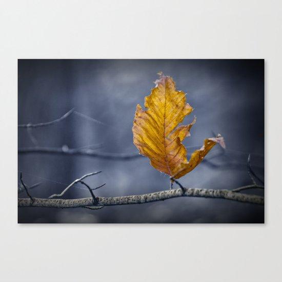 Last Leaf of Autumn Canvas Print