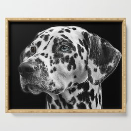 Dalmatian with One Blue Eye Portrait Photograph Serving Tray