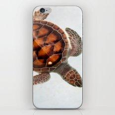 Little beauty iPhone & iPod Skin