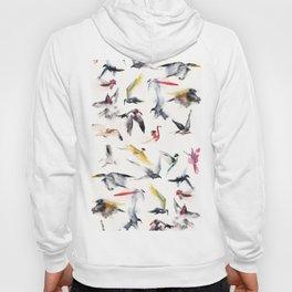 Free birds Hoody