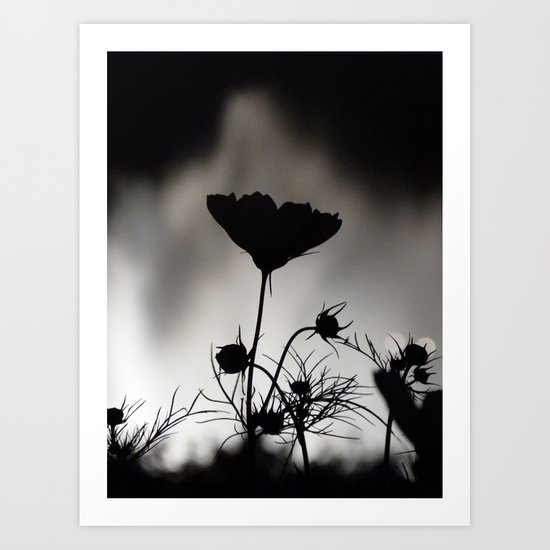 Flower in black and white Art Print