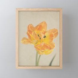 Vintage Tulip Orange Framed Mini Art Print