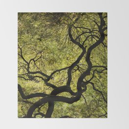 Japanese Maple Tree Throw Blanket