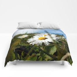 Close-up Daisy Comforters