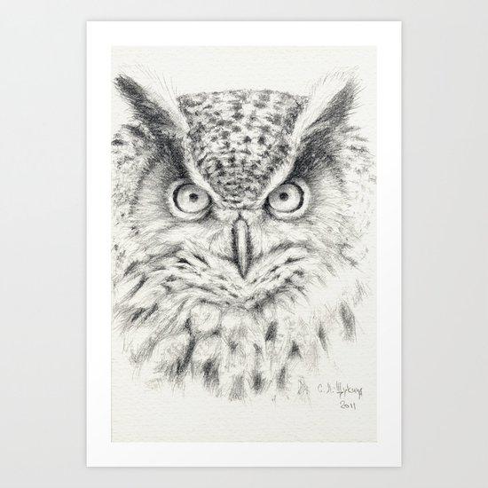 Owl G2011-012 Art Print