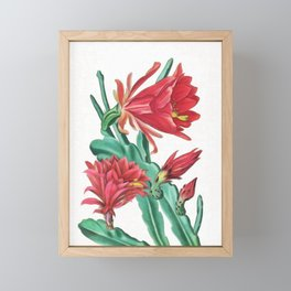 Blooming cactus I Framed Mini Art Print