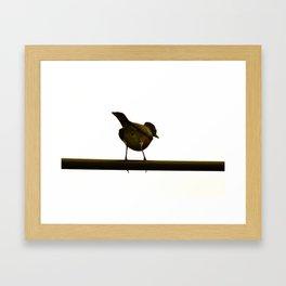 Just a Bird on a Wire Framed Art Print