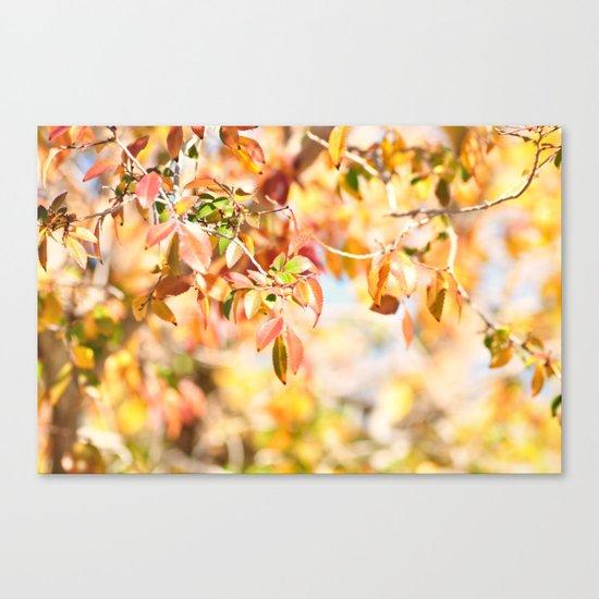 Enchanted... Canvas Print