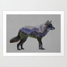 The Rocky Mountain Gray Wolf Art Print