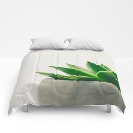 Simple Succulent Comforters