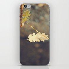 Leaf. iPhone & iPod Skin