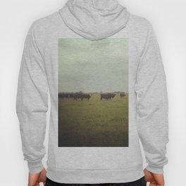 Fields Hoody