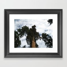 Giants Framed Art Print