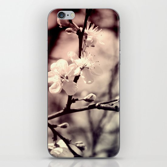 Tree Blossom iPhone & iPod Skin