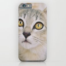 Cat of the floating village Slim Case iPhone 6s