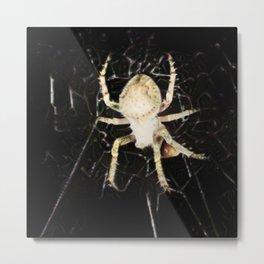 Mid-air Spider Metal Print