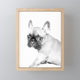 French Bulldog Puppy Framed Mini Art Print