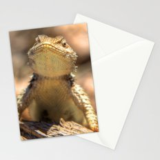 Curious Critter Stationery Cards