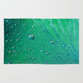 Emerald Feather Rug