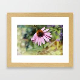 Summer pink flower Framed Art Print
