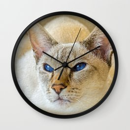 SIAMESE CAT LOVE Wall Clock