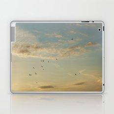 In Flight #7 Laptop & iPad Skin