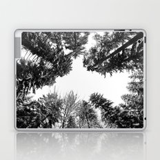 snow + trees Laptop & iPad Skin