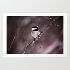 Chickadee in a Flurry Art Print