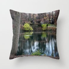 Cemetery Reflections Throw Pillow