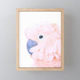 Pink Cockatoo Portrait Framed Mini Art Print