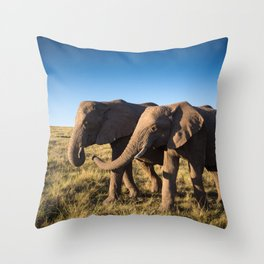 Two happy elephants walking together in African Savannah at sunset Throw Pillow