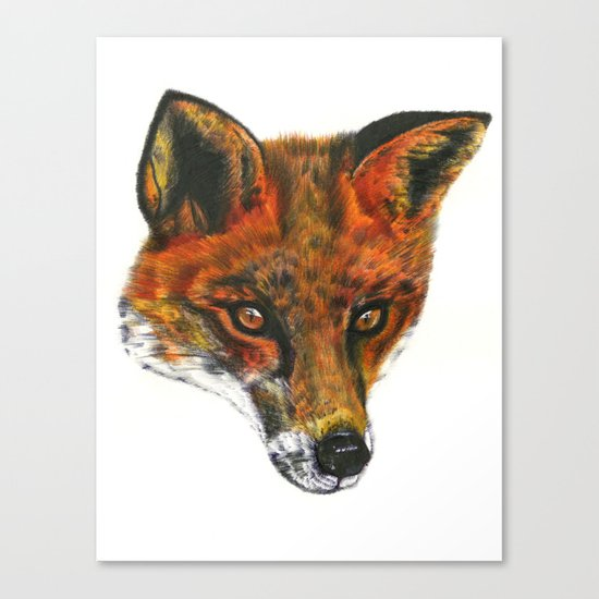 Foxy! Canvas Print