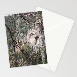 Wisteria Buds Surrounding the Lycian Tombs Dalyan Stationery Cards