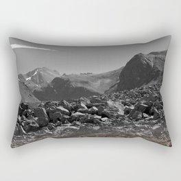 WF Rectangular Pillow
